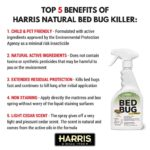 How To Kill A Bed Bug Naturally?