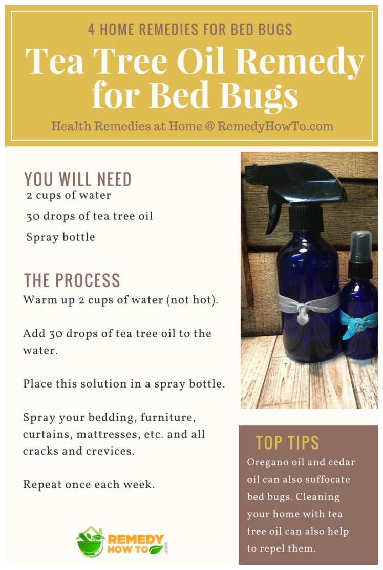 How To Kill Bed Bugs Naturally At Home