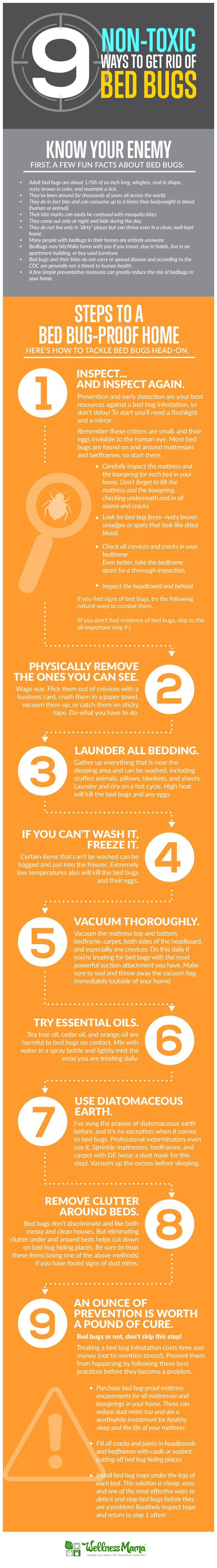 How To Kill Bed Bugs Using Home Remedies