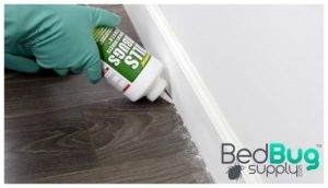 Is Baby Powder Good To Kill Bed Bugs