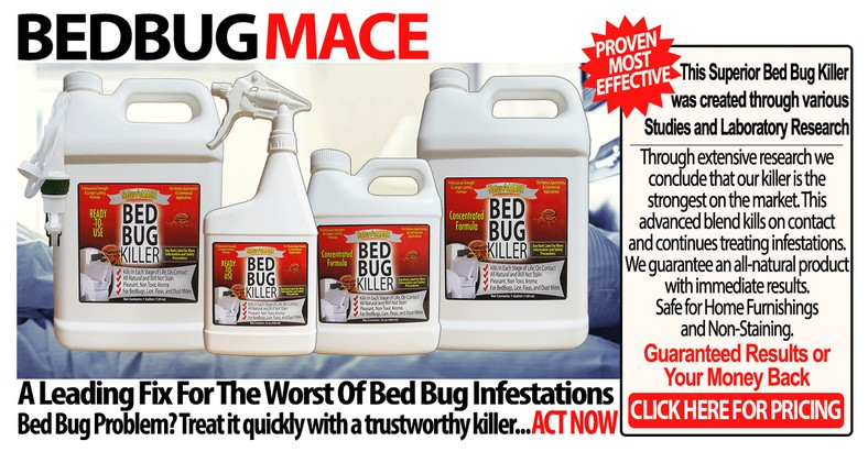 Is There A Scent That Repels Bed Bugs