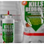 Natural Bed Bug Killer Powder