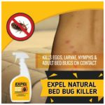 Natural Predator For Bed Bugs