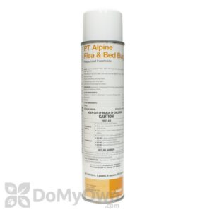 Preparing For Bed Bug Chemical Treatment