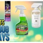 The Best Bed Bug Killer Spray
