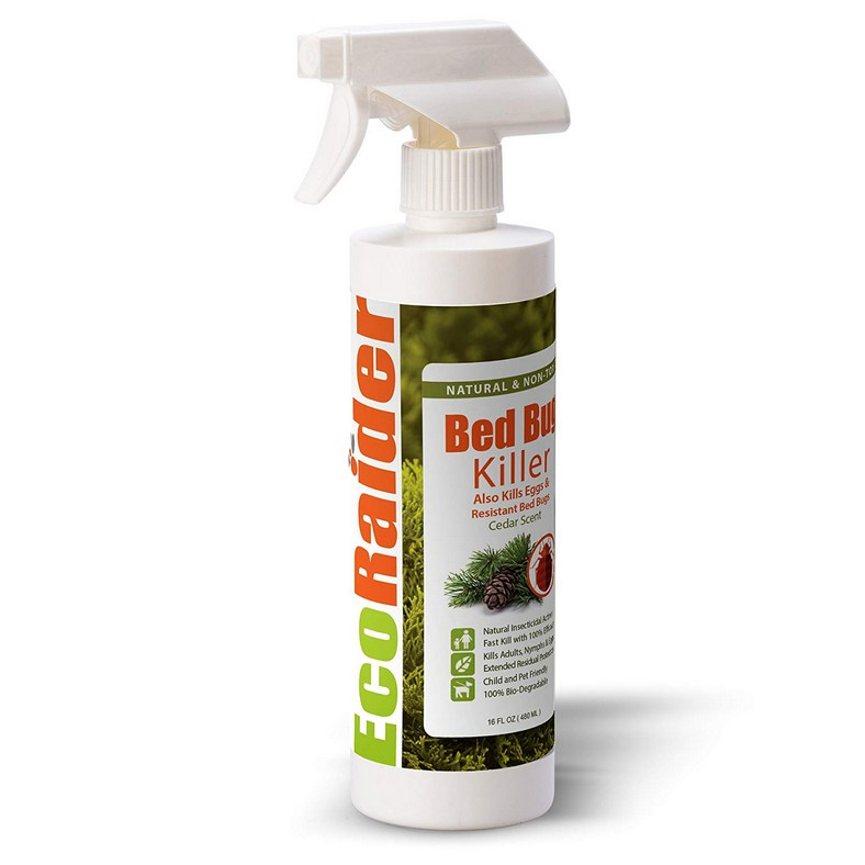 The Most Effective Way To Get Rid Of Bed Bugs