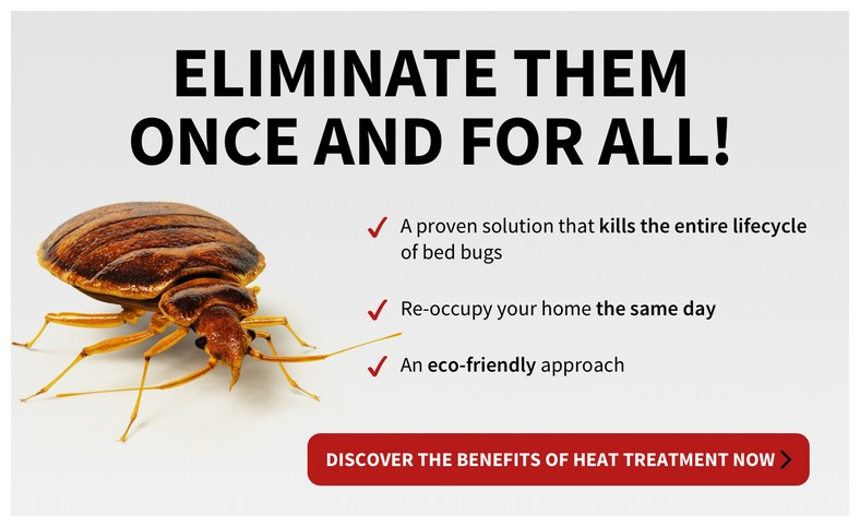 What Chemical Is Good For Bed Bugs