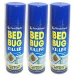 What Freezing Temperature Kills Bed Bugs?