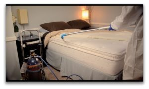 What Happens After Bed Bug Treatment