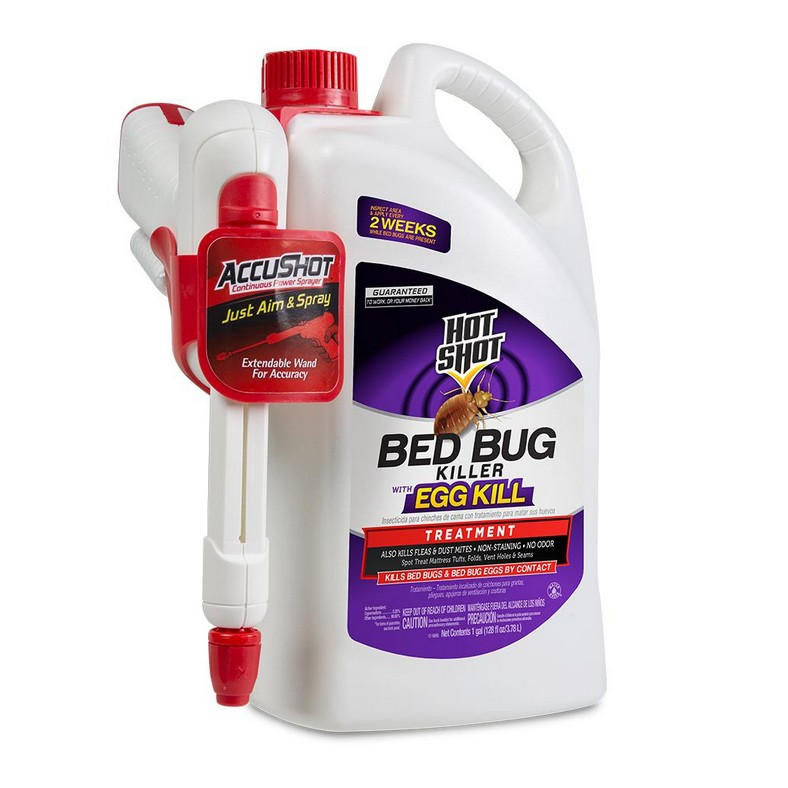 What Home Remedy Can Kill Bed Bugs