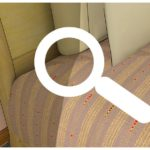 What Is The Best Product To Kill Bed Bugs?