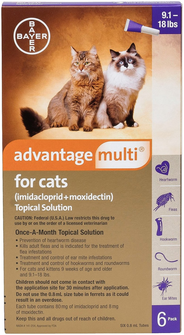 Ear Mite Treatment For Kittens